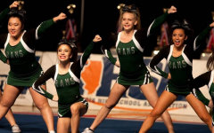 Cheer places 9th in IHSA State Tournament