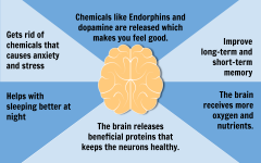 These are the effects of working out on our mental and emotional health.